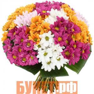 Букет «Яркие хризантемы»