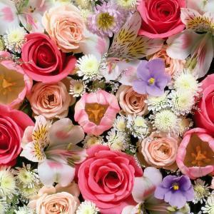 Все цветы